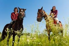 Junge Paare, die reinrassige Pferde an der Landschaft reiten Stockfoto