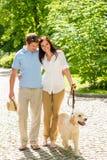 Junge Paare in gehendem Park der Liebe Hunde Stockfoto