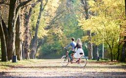 Junge Paare, gutaussehender Mann und attraktive Frau auf Tandemfahrrad im sonnigem Sommerpark oder -wald lizenzfreie stockfotos