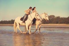 Junge Paare im Meer auf zu Pferde stockfotografie