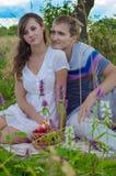 Junge Paare mit einem Korb von den Äpfeln, die sich draußen entspannen Stockbild