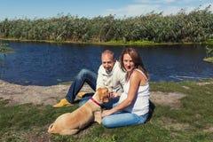 Junge Paare mit Hund Stockbild