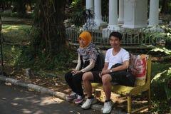 Junge Paare zusammen auf einer Bank im botanischen Garten Stockfoto