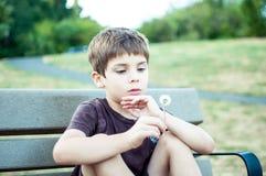 Junge am Park anstarrend entlang des Löwenzahns Lizenzfreie Stockfotografie