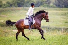 Junge Reiterfrau, die auf Braune auf Wiese galoppiert Lizenzfreie Stockfotografie