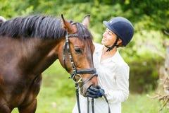 Junge Reiterfrau im Sturzhelm, der Braune hält Stockbild