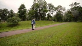 Junge reizende Paare, die in einen Park im Sommer gehen Romantische Datierung oder lovestory stock video