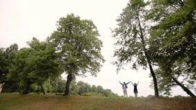 Junge reizende Paare in einem Park im Sommer Romantische Datierung oder lovestory stock video