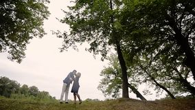 Junge reizende Paare in einem Park im Sommer Romantische Datierung oder lovestory stock video footage