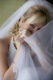 Junge schöne Braut, die zwar Schleier schaut stockbilder