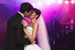 Junge schöne Hochzeitspaare Stockbilder