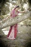 Junge schöne indische hindische Braut, die unter Baum steht Stockbild
