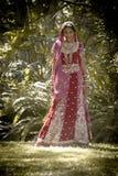 Junge schöne indische hindische Braut, die unter Baum steht Stockfotografie