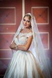 Junge schöne luxuriöse Frau im Hochzeitskleid, das im luxuriösen Innenraum aufwirft Herrliche elegante Braut mit langem Schleier  Stockfoto