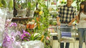 Junge schöne Paare mit Supermarktlaufkatze sind gehend wählend und Zimmerpflanze im Einkaufszentrum Frau ist stock video