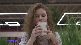 Junge schöne rothaarige Frau sitzt in einem Café und trinkt Kaffee mit Eibischen stock footage