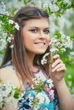 Junge Schönheit, die Geruch des blühenden Baums an einem sonnigen Tag genießt stockfotografie