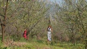 Junge Schönheiten im langen Kleiderspielen holen im Frühjahr Blütengarten auf stock video footage