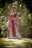 Junge schöne indische hindische Braut, die unter Baum steht Lizenzfreie Stockbilder