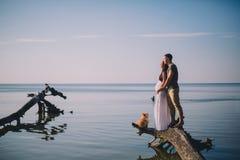 Junge-schwangere Paare in der Liebe Stockbilder