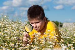 Junge sieht Blumenvergrößerungsglas Stockfotos
