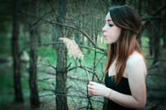 Junge sinnliche Frau in der hölzernen Harmonie mit Natur Lizenzfreies Stockbild