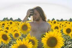 Junge am Sonnenblumenfeld Stockfoto