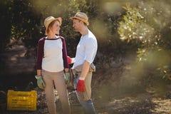 Junge sprechende Paare bei der Stellung am olivgrünen Bauernhof Lizenzfreie Stockbilder