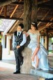 Junge stilvolle Modepaare Asiens, die auf Natur aufwerfen Lizenzfreie Stockbilder
