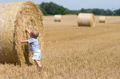 Boy at the straw bales Stock Image