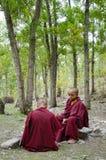 Junge tibetanische Mönche stockbilder
