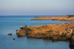 Junge Touristen fotografiert auf dem Strand Lizenzfreie Stockfotos