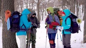 Junge Touristen tragen warme Jacken und halten Rucksäcke, plaudern und besprechen sich im Winterwald stock video footage