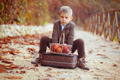 Junge und Äpfel Stockfotografie