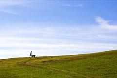 Junge und ein Hund Lizenzfreie Stockfotografie