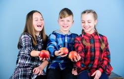 Junge und Freundinnen essen Apfel Teenager mit gesundem Imbiss Gesunde N?hren und Vitaminnahrung Essen Sie Frucht und zu sein lizenzfreie stockfotografie