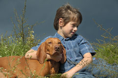 Junge und Hund in der Wiese lizenzfreie stockbilder