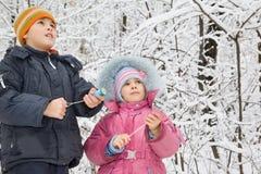 Junge und kleines Mädchen mit Petard in den Händen im Winter Lizenzfreie Stockfotos