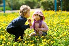 Junge und Mädchen auf dem Sommerblumengebiet Lizenzfreie Stockfotografie