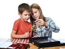 Junge und Mädchen betrachten Münzsammlung als lokalisiert stockbilder
