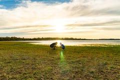 Junge und Mädchen in der Ufergegend lizenzfreie stockfotografie