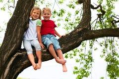 Junge und Mädchen, die auf einem Baum sitzen Stockfoto