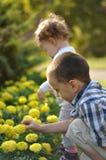 Junge und Mädchen im Park Lizenzfreies Stockfoto