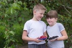 Junge und Mädchen nahe einer Baummaulbeere stockfotografie