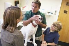 Junge und Mutter, die Hund für Prüfung durch Vet nehmen Lizenzfreie Stockfotos