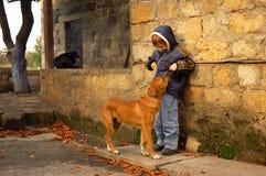 Junge und obdachloser Hund Stockfotografie