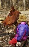 Junge und Pferd Stockbild
