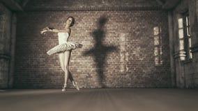 Junge und schöne Ballerina stock abbildung