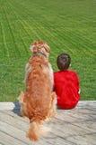 Junge und sein Hund stockbild