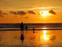 Junge und zwei Hunde spielen in den Wellen stockfotografie